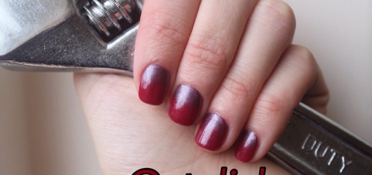 Read full story «Facts about Shellac you NEED to know»